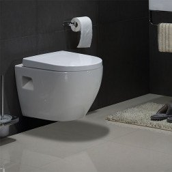 Wandcloset - Hangend toilet Daley Flatline - Inbouwtoilet Rimfree WC Pot 1